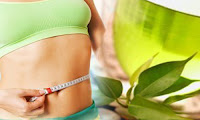 How does Green Tea helps you lose weight