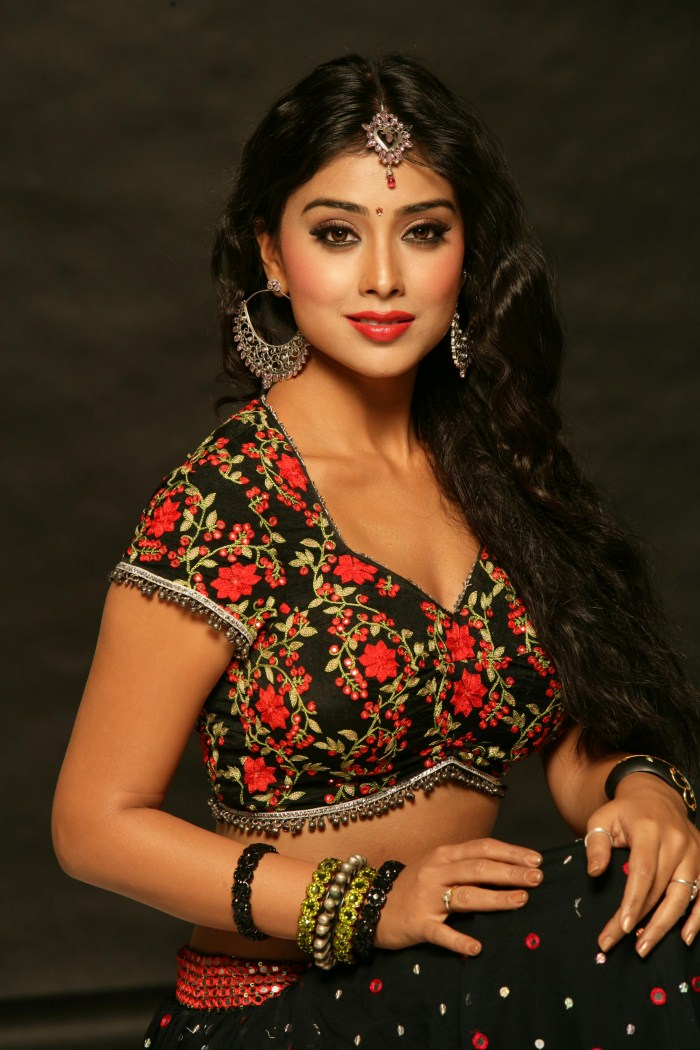 Shriya Saran Black Saree Photoshoot 2011