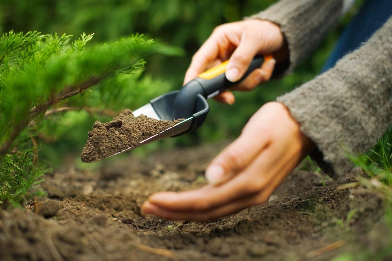 Best gardening blog top gardening tips landscaping for Gardening tools trowel