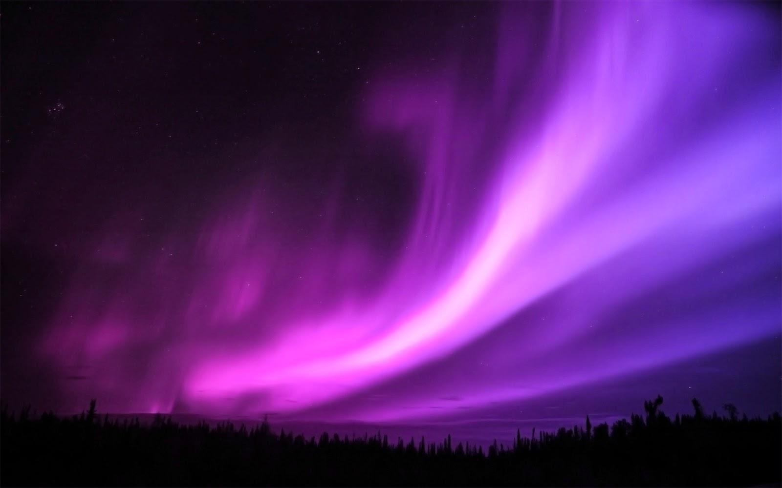 northern lights  auroraNorthern Lights
