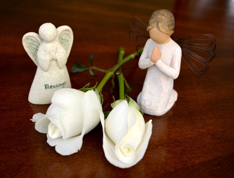 cozy birdhouse | little angels