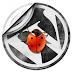 wordpress fckeditor upload Vunerablity : Upload Your file and Deface easily