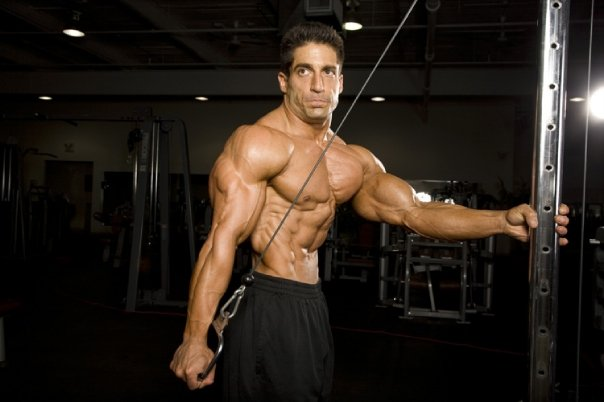 Bodybuilding champions: Very important :what is Tricep ...