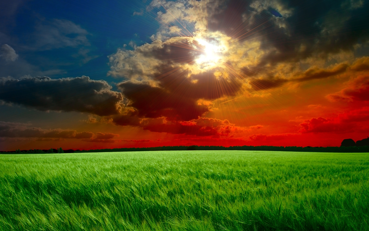 Beautiful Background Wallpapers   full hd Wallpapers