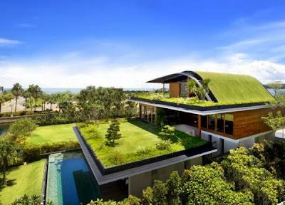12 Inspirasi Rumah Dengan Green Roof 2