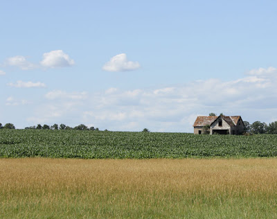 photo of abandoned farm house in a field