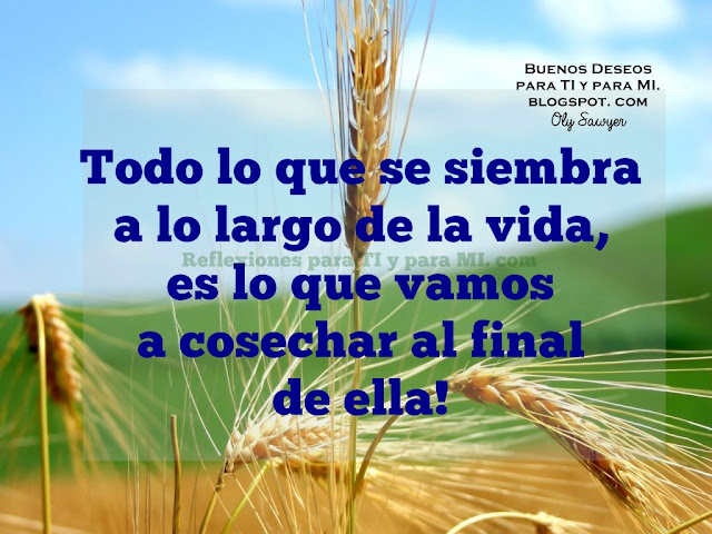 Todo lo que se siembra a lo largo de la vida, es lo que vamos a cosechar al final de ella!