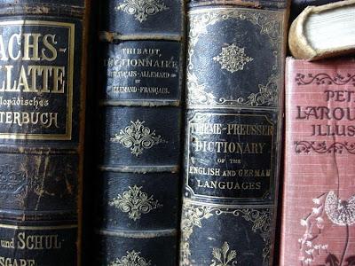"""Buchrücken historischer Wörterbücher, darunter """"Petit Larousse"""" und Sachs-Villatte"""