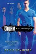 Storm, Brigid Kemmerer
