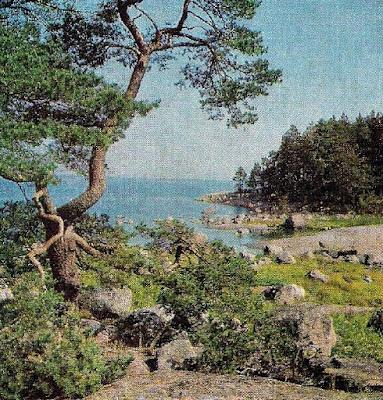 Финляндия, природа, экскурсии, частный гид