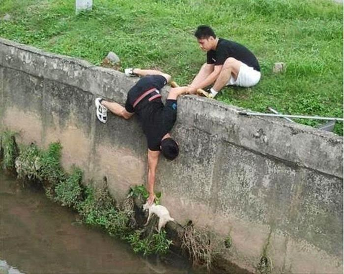 People doing amazing things for animals (28 pics), two guys rescued a cat falling into river
