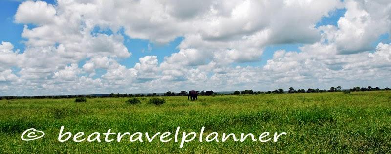 panorama con elefante