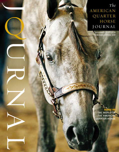 American Quarter Horse Journal Horse Cover