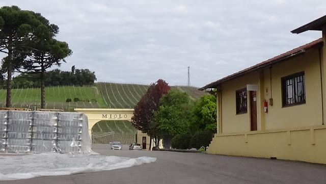 Vinícola Miolo - Vale dos Vinhedos - RS