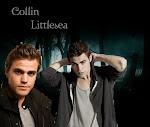 Collin Littlesea