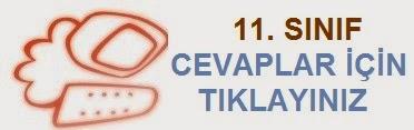 11.SINIF CEVAPLAR