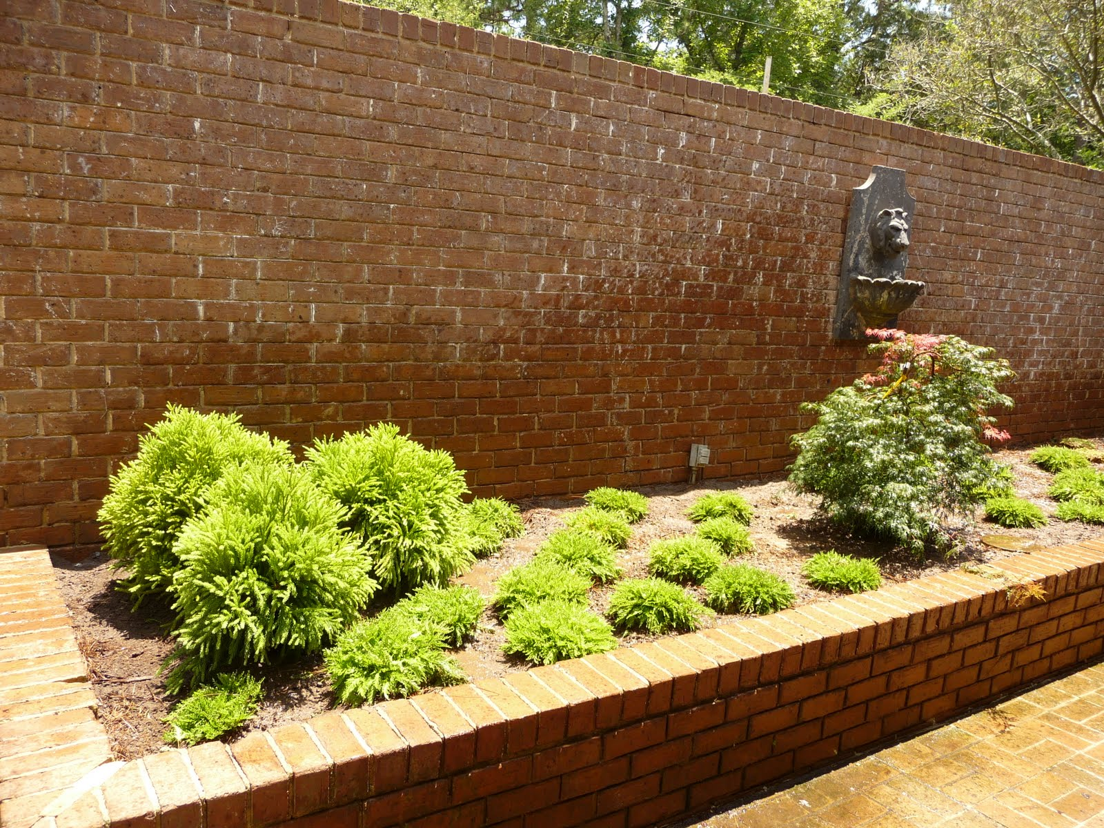 here is an example of planting around brick while focusing on an asian inspired garden incorporating japanese maples