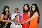 Veerudokkade movie audio launch photos-thumbnail-15