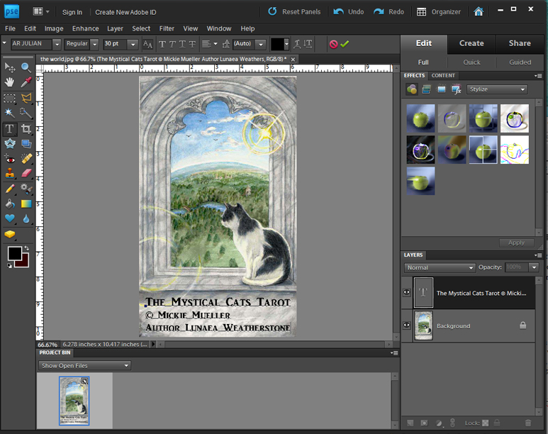 how to get the copyright symbol in photoshop