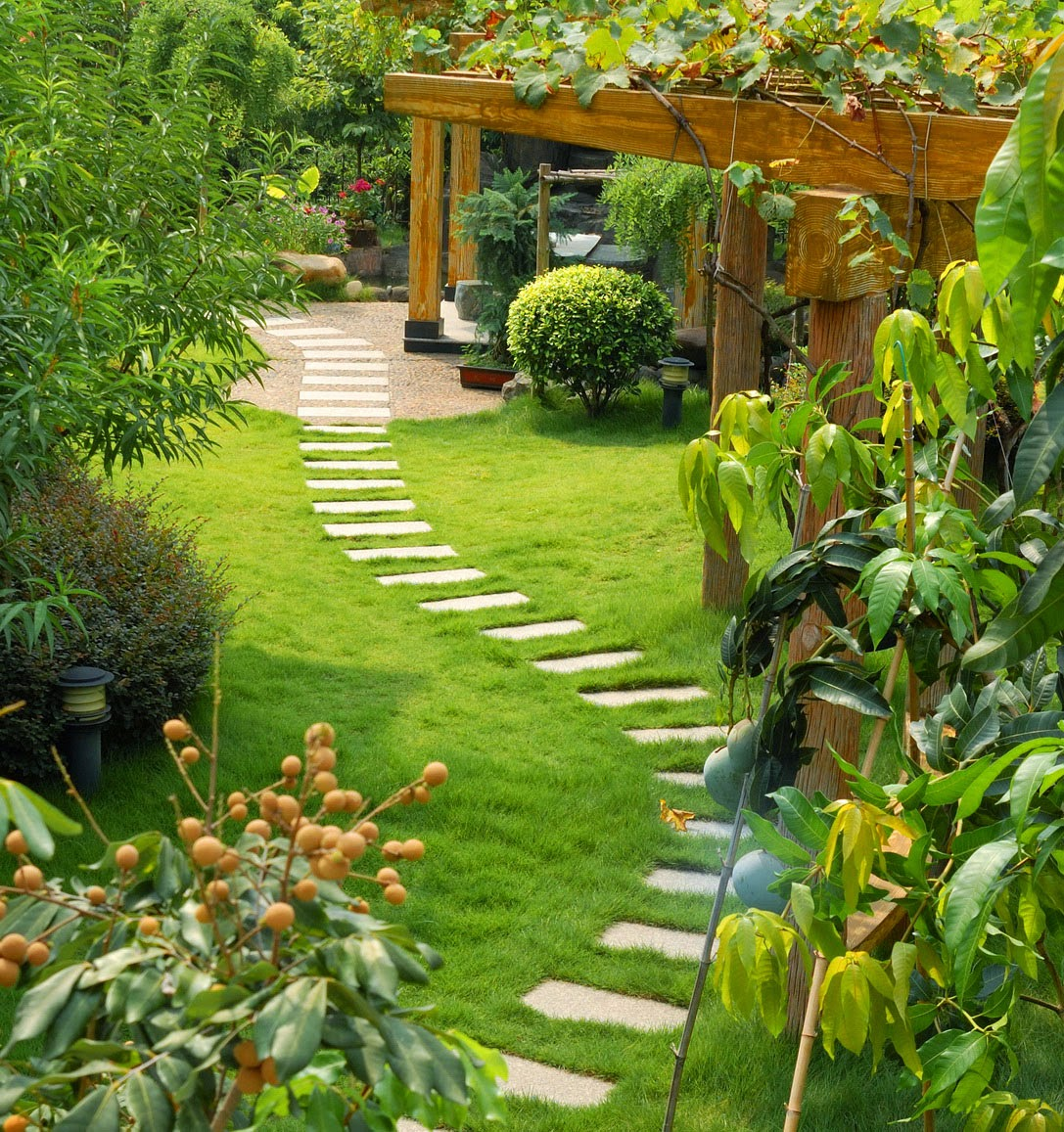 9 Easy Gardening Tips for The Amazing Garden On Vanilla21