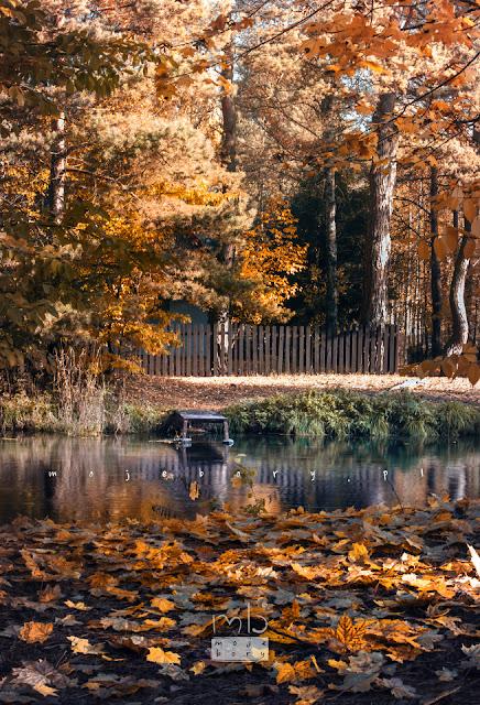 Wielki Kanał Brdy jesienią