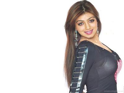 Ayesha Takia Bollywood Babe Wallpaper