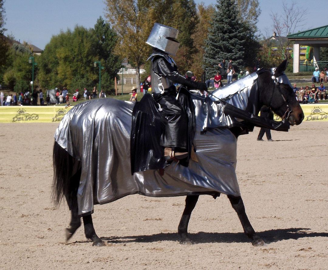 Alex d pferd und reiter hard bizzare bdsm latex sex - 5 8