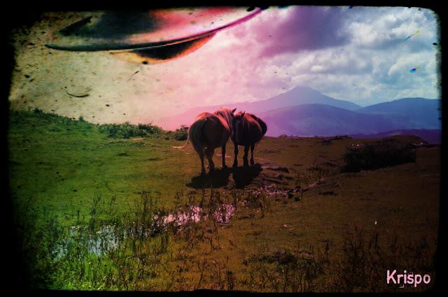 un ovni encima de dos caballos en jaizkibel