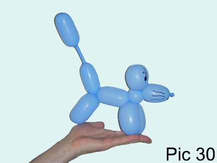 Balloon Animals Twisting Instructions Balloon Dog
