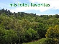 mis fotografías preferidas