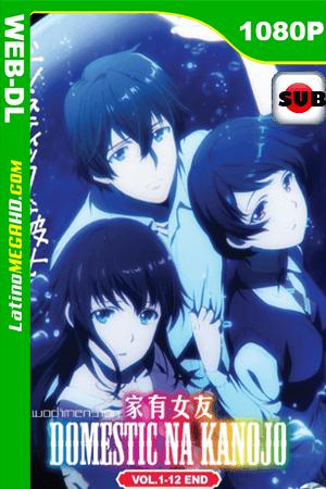 Domestic na Kanojo (2019) Subtitulado HD WEB-DL 1080p ()