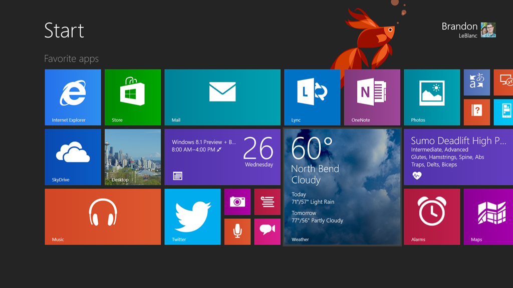 security flaw in windows 8.1