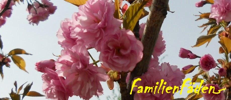 FamilienFäden