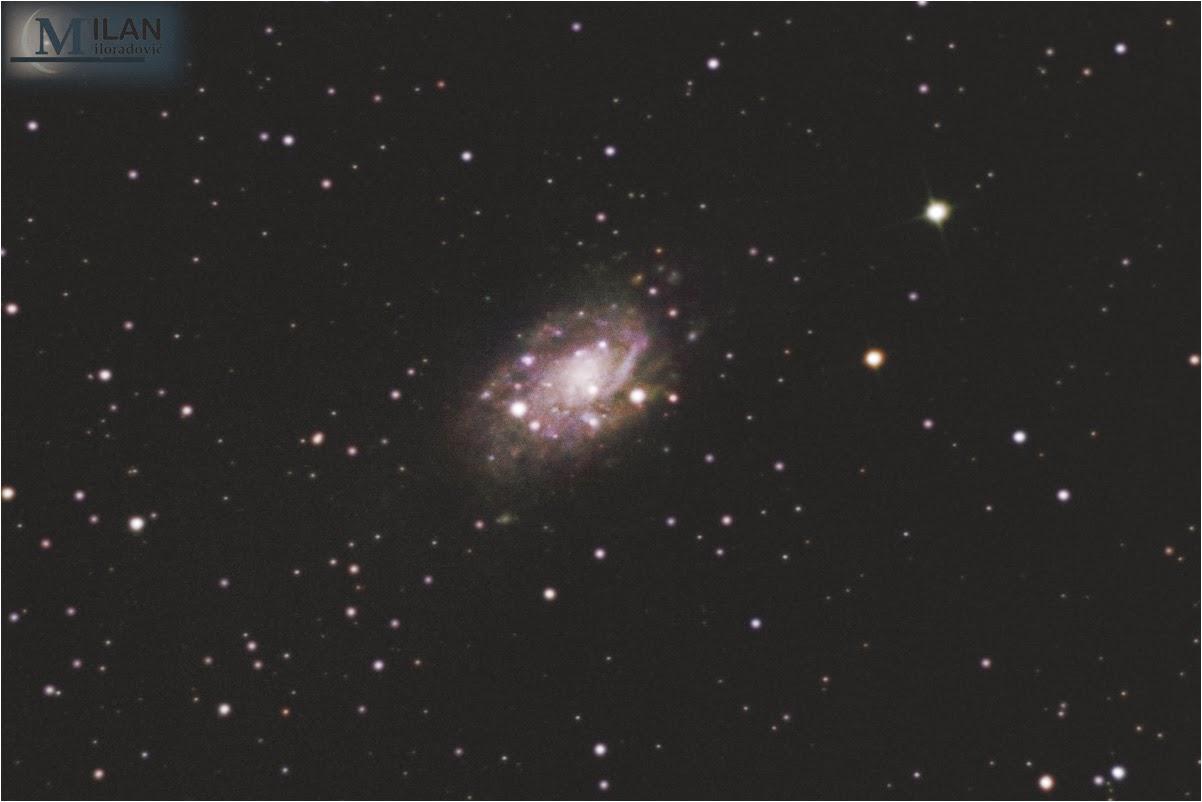 NGC2403
