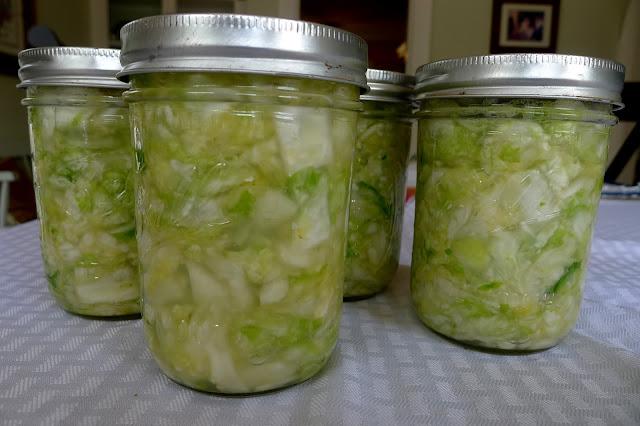 Homemade sauerkraut, fermenting