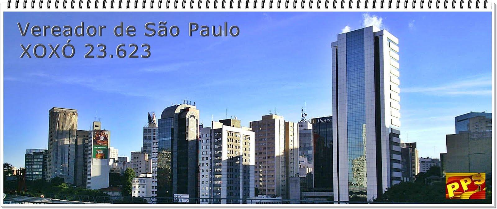PPS - Xoxó com Soninha Francine