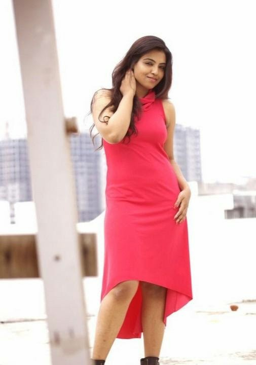 Saasha Gopinath Hot Photo Shoot