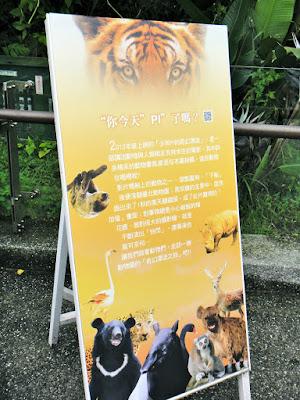 Reliving Life of Pi at Taipei Zoo Taiwan