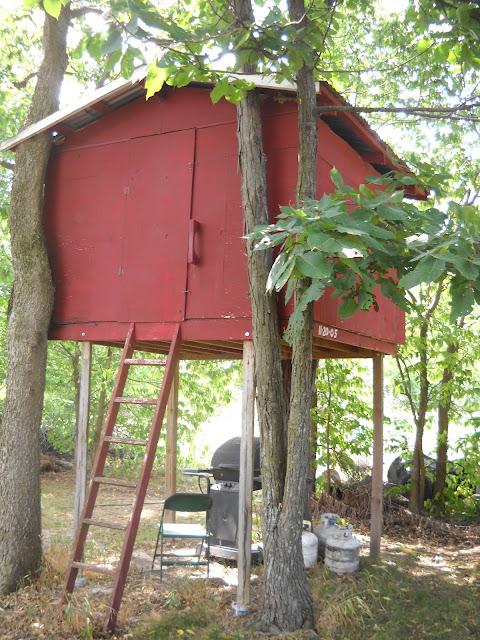 Best woodworking plans book building deer tree stands for Tree stand building plans
