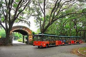 Free Tickets-2-Ride Special Starts Today! 5 09072013183811 St. Francis Inn St. Augustine Bed and Breakfast