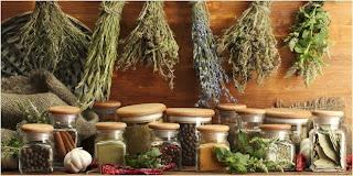 bahan alami untuk obat herbal