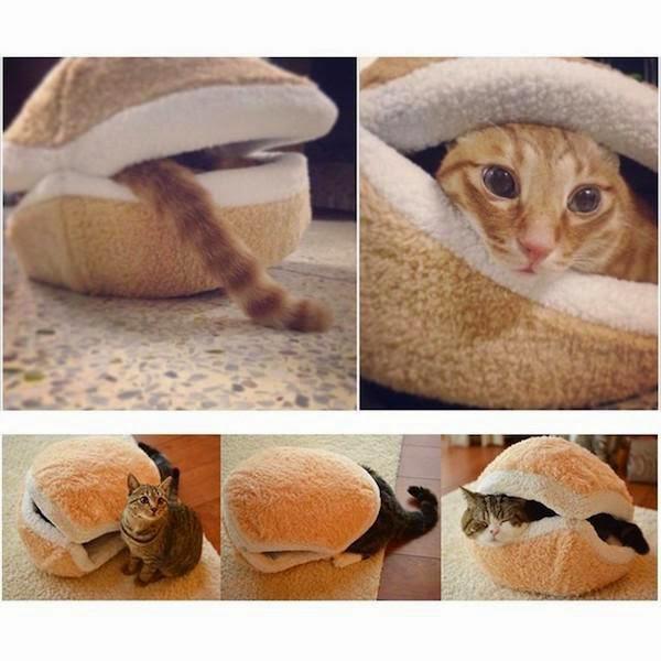 προϊόντα κατοικίδια ζώα