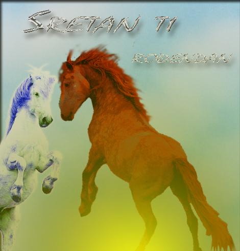 Rođendan Konji