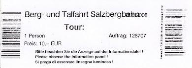 Ξενάγηση στο Πύργο του Σάλτσμπουργκ