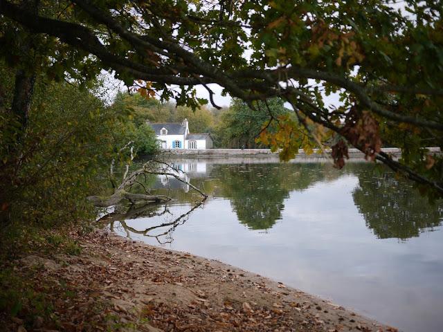 l'étang Aumée , à Fégréac (44)