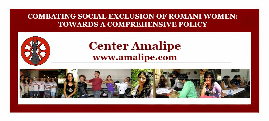 http://amalipe.com/files/publications/final_publication.pdf