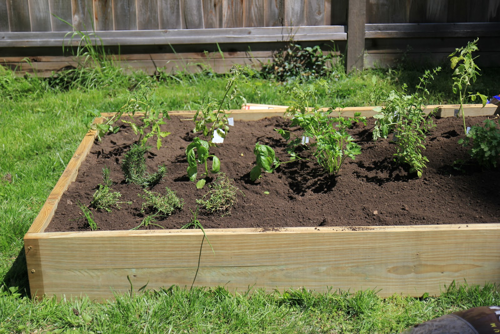 My $75 Backyard Garden | Diy Raised Bed Garden Box