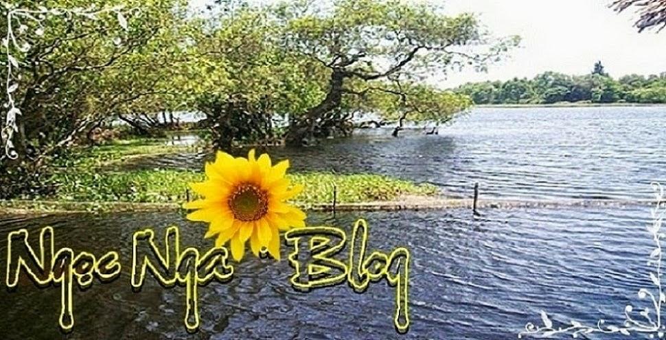 Blog của Ngọc Nga