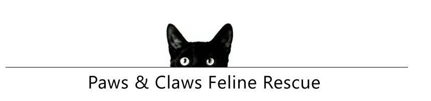 Paws and Claws Feline Rescue