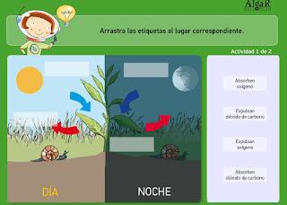 http://www.bromera.com/tl_files/activitatsdigitals/Natura_4c_PF/natura4_cas_u07_pag50_3.swf